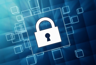 How to Ensure Your WordPress Site is Secure | BizowOnline